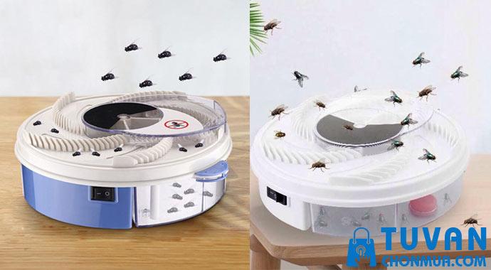 bẫy ruồi thông minh